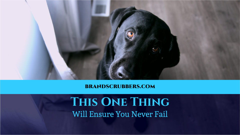 This One Thing Will Ensure You Never Fail